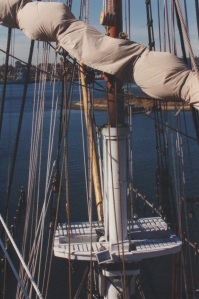 View from the main mast top. Photo- R.D. Wilkins