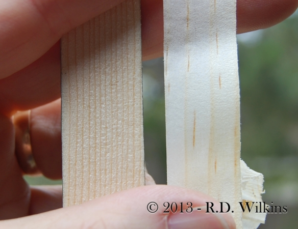 comparison of power planer cut (left) with a hand plane shaving (right)